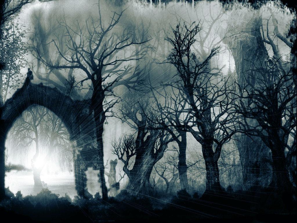 bosque_tenebroso-1024x768