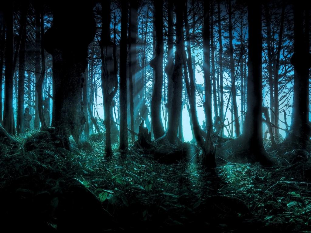 bosques-encantados
